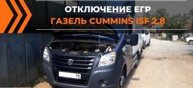 Отключение клапана ЕГР на ГАЗЕЛЬ Cummince ISF2.8 в Липецке!
